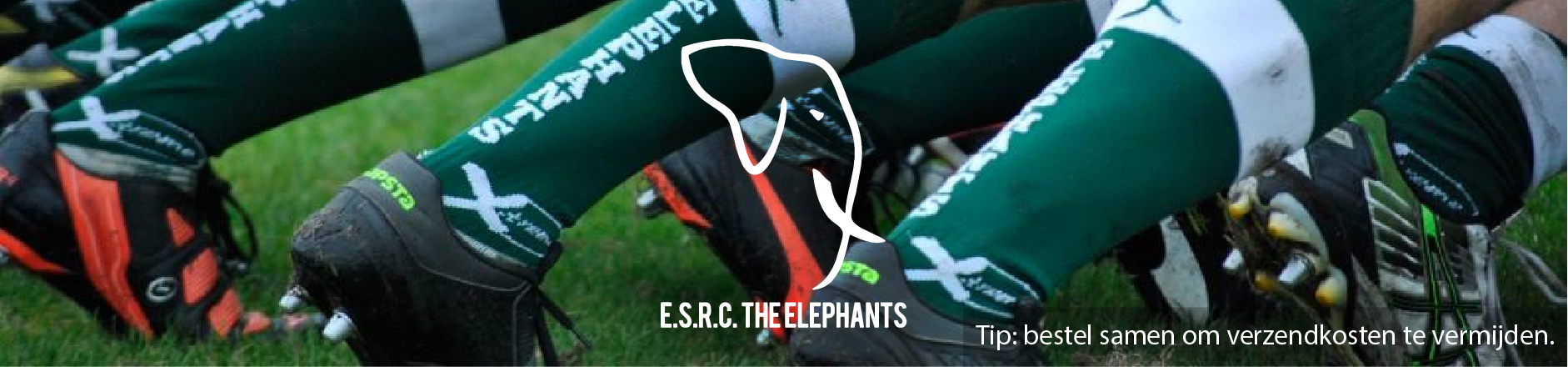 ESRC The Elephants